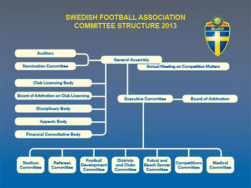 Swedish F.A. Committee structure 2013