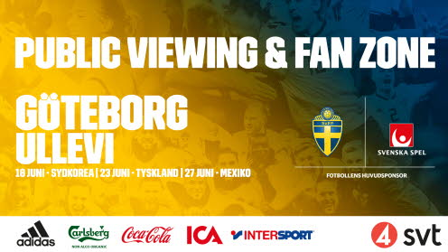 Public Viewing i Göteborg.